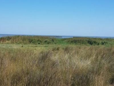 Constanta - Vadu - teren cu iesire la lac